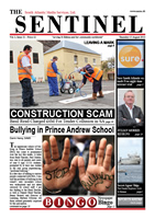 The Sentinel 15 August 2013 - vol 2 issue 21