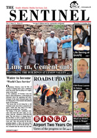 The Sentinel, 31 October 2013, vol 2 issue 32
