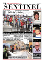 The Sentinel, 3 April 2014, vol 3 issue 2