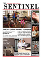 Sentinel 15 May 2014 - vol 3 issue 8