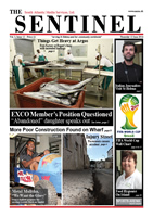 Sentinel 12 June 2014 - vol 3 issue 12