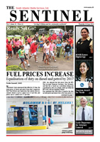 The Sentinel 26 June 2014 - vol 3 issue 14