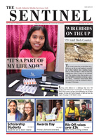 The Sentinel 23 June 2016 - vol 5 issue 12